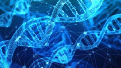 zmodyfikowane genetyczne dzieci