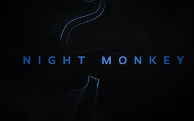 Zwiastun Night Monkey