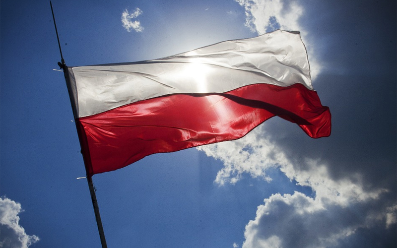 Polskie filmy w VOD